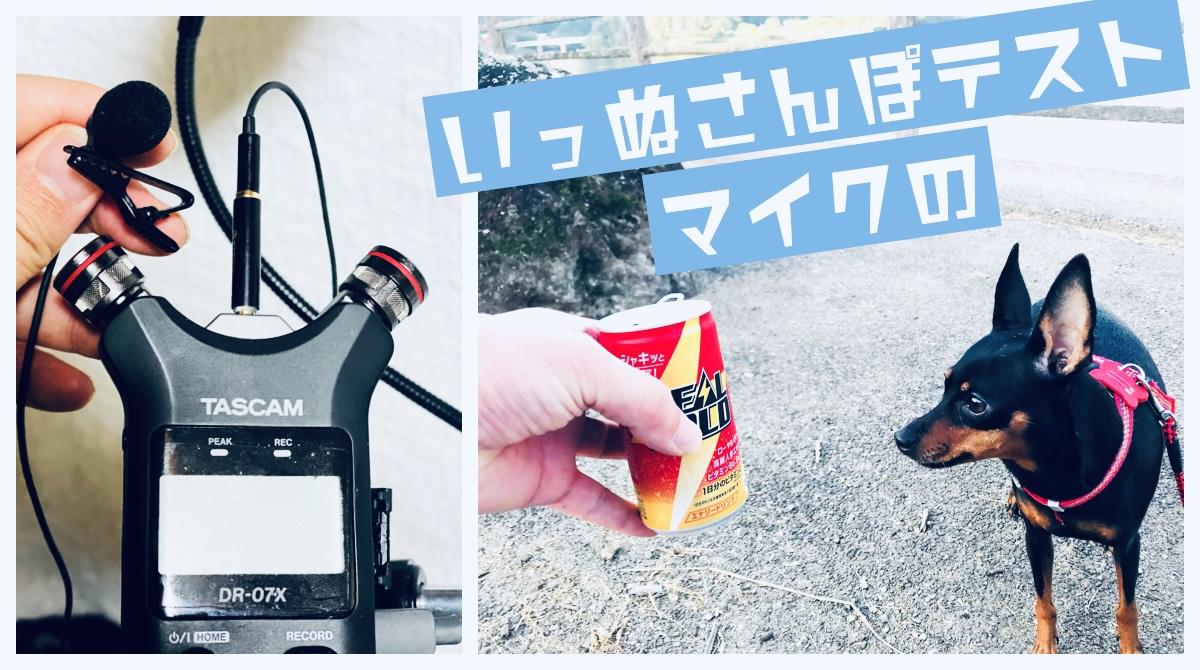 犬の散歩中の「1000円以下のピンマイク+TASCAM DR-07X」音声録音テスト